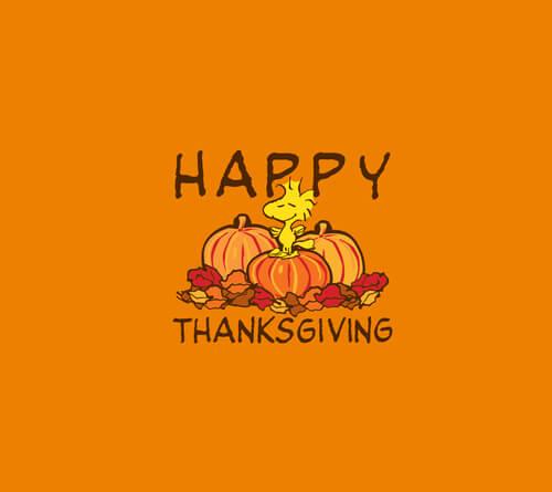 Photos For Thanksgiving
