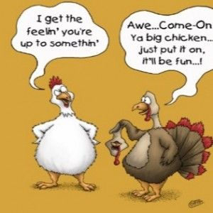 Funny Thanksgiving Greetings