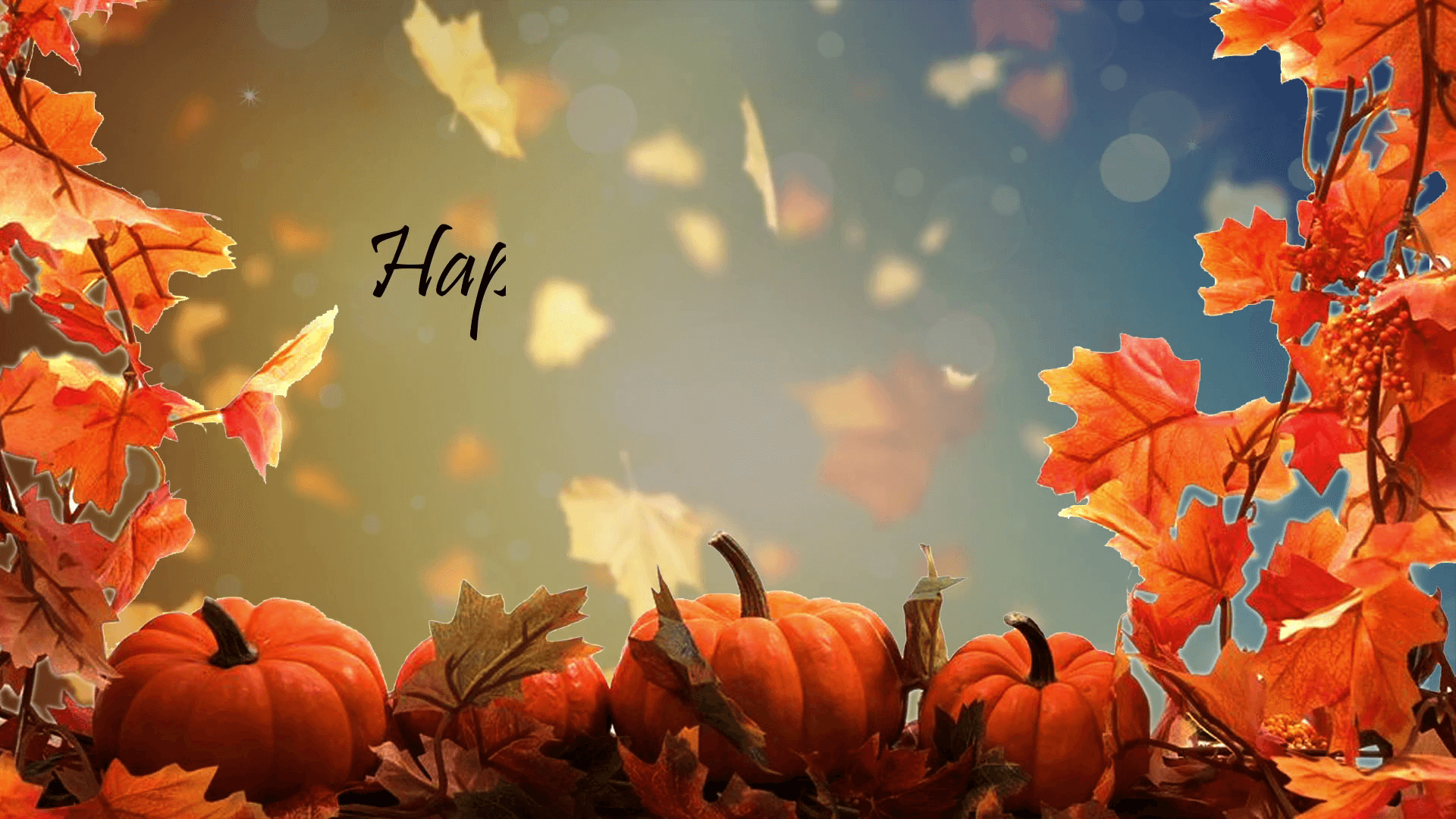 Thanksgiving Background Pics