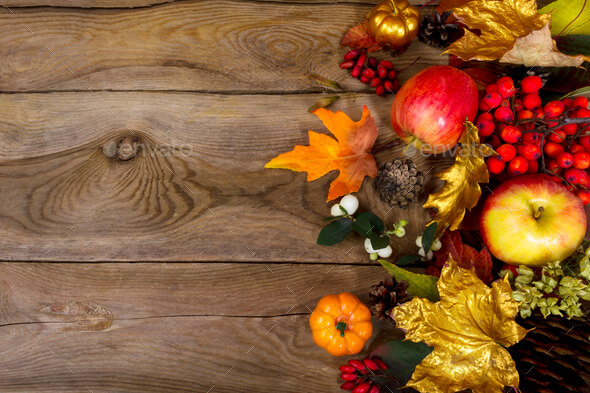 Thanksgiving Background Free