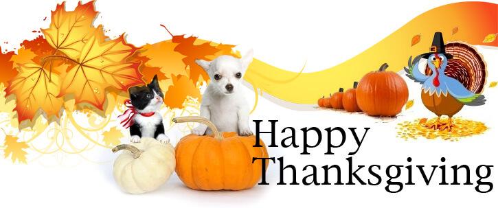 Thanksgiving Banner For Kids