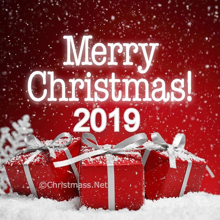 Merry Christmas 2019 Photos